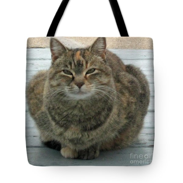 Muffin The Feral Cat Tote Bag