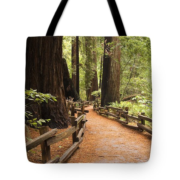 Muir Woods Trail Tote Bag