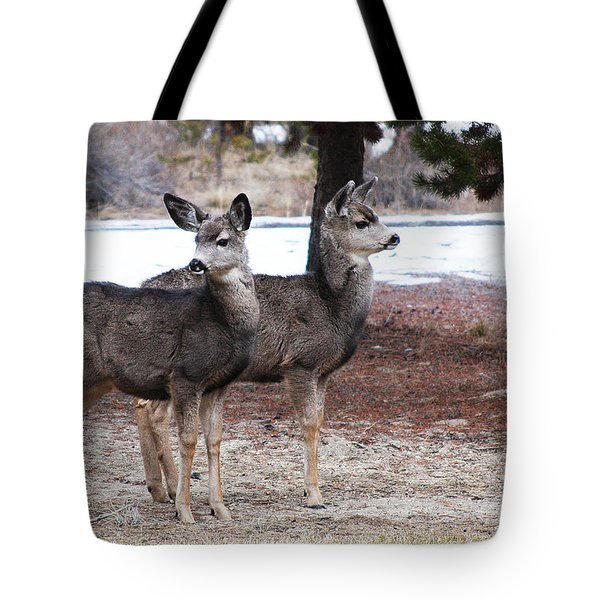 Mule Deer Fawns Tote Bag