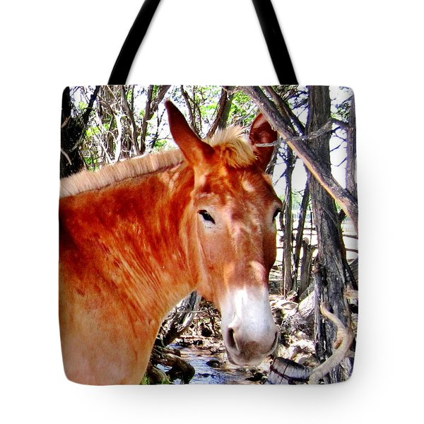Tote Bag featuring the photograph Muley by Marilyn Diaz