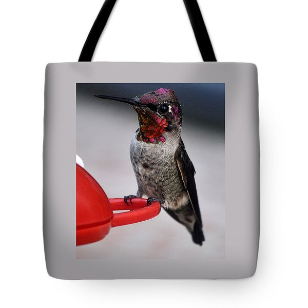 Tote Bag featuring the photograph Multi Colored Hummingbird Male Anna by Jay Milo