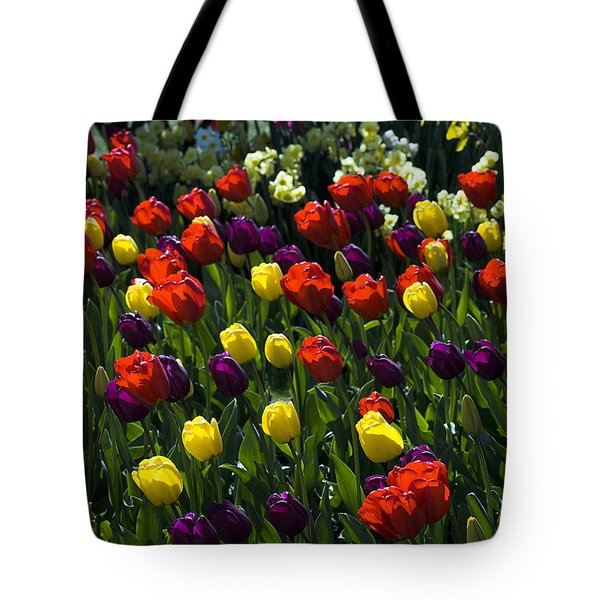 Multicolored Tulips At Tulip Festival. Tote Bag