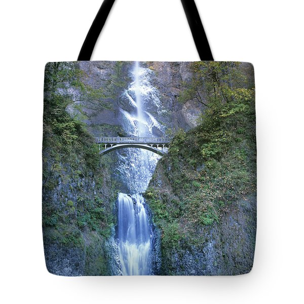 Tote Bag featuring the photograph Multnomah Falls Columbia River Gorge by Dave Welling
