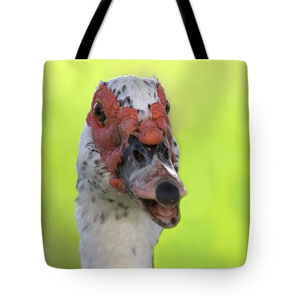 Muscovy Duck Tote Bag by Rudy Umans