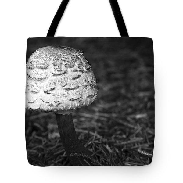 Mushroom Tote Bag by Adam Romanowicz
