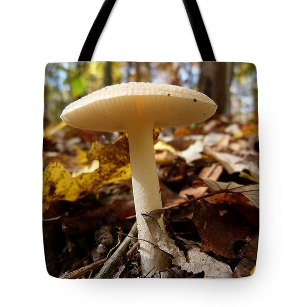Tote Bag featuring the photograph Mushroom At Walney by Jane Ford