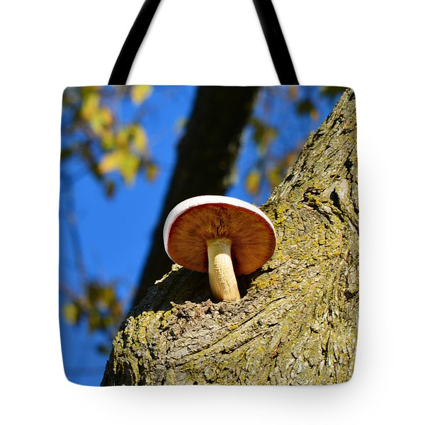 Tote Bag featuring the photograph Mushroom In A Tree by Ally  White
