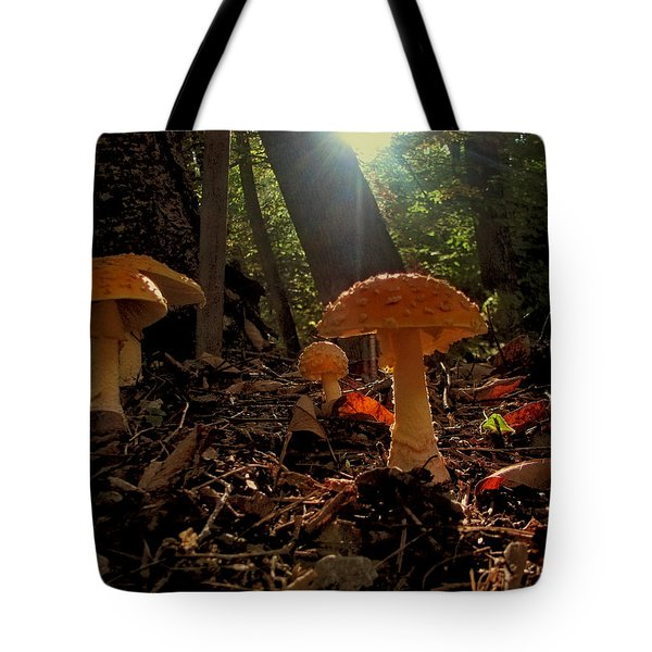 Tote Bag featuring the photograph Mushroom Morning by GJ Blackman