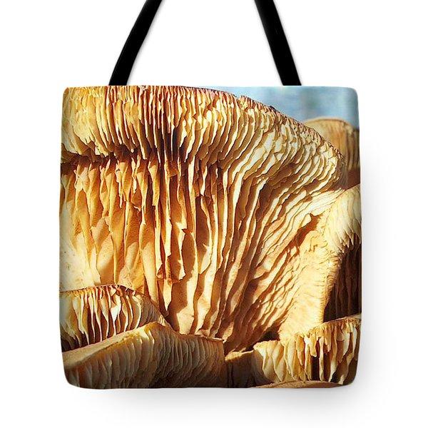 Mushrooms By Jan Marvin Tote Bag