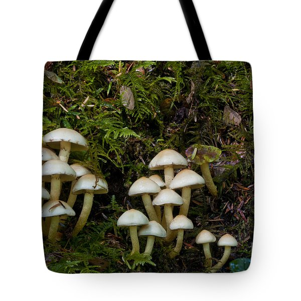Mushrooms In The Oregon Coast Range Tote Bag by William H. Mullins