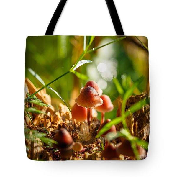 Mushrooms On A Decaying Stump Tote Bag