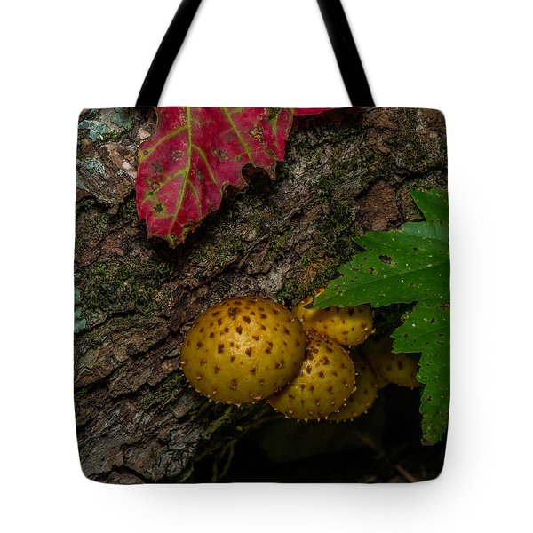 Mushrooms On The Forest Floor Tote Bag