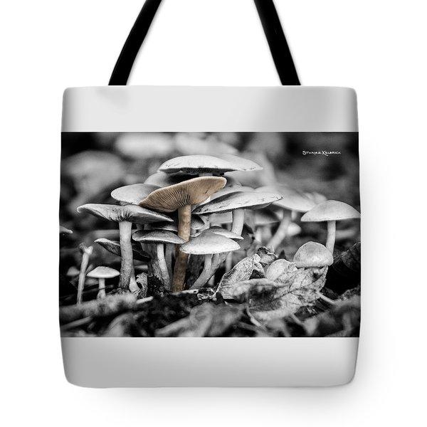 Tote Bag featuring the photograph Mushrooms by Stwayne Keubrick