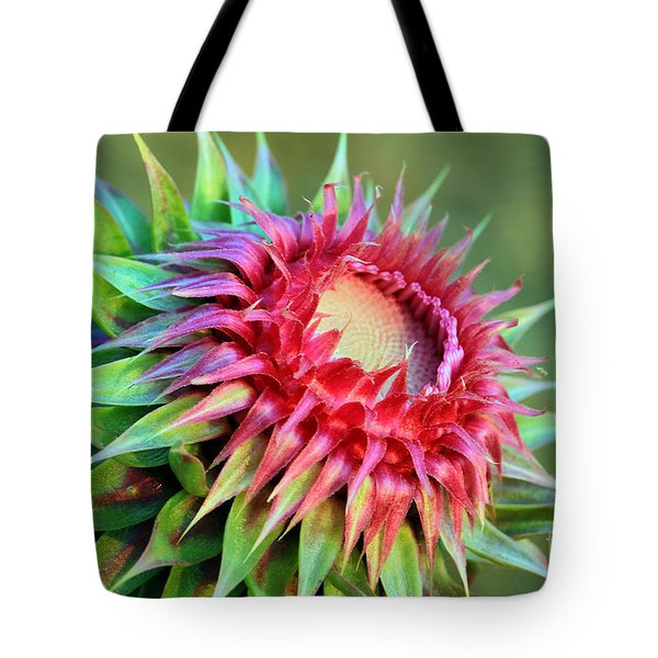 Musk Thistle Tote Bag by Teresa Zieba