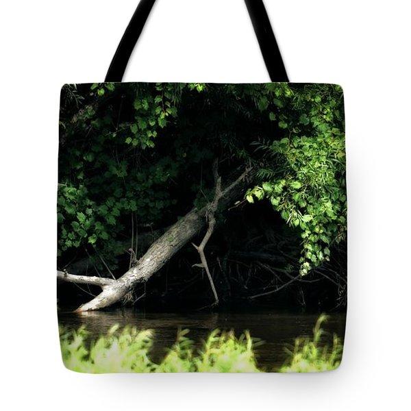 Muskegon River Heron Tote Bag