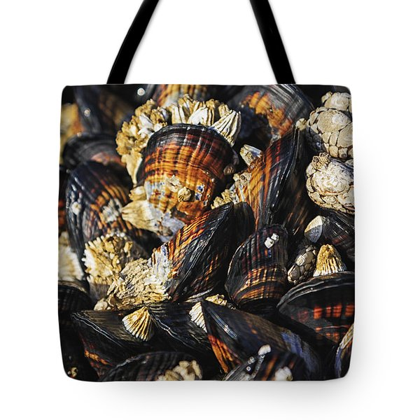 Mussels And Barnacles Tote Bag