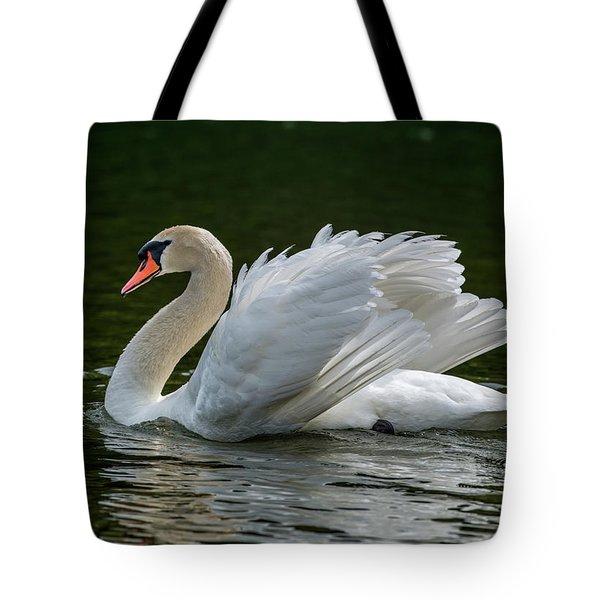 Mute Swan Cygnus Olor Displaying Tote Bag