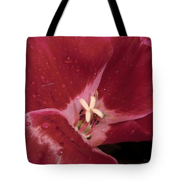 My Beauty Tote Bag