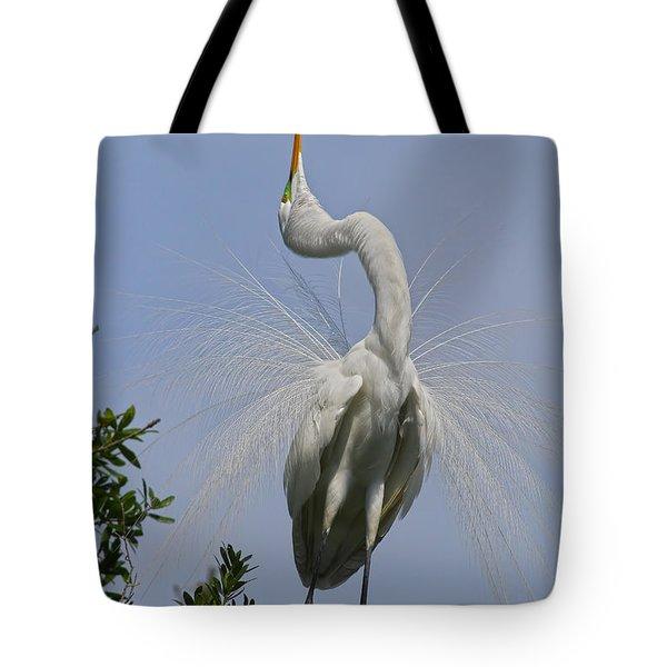 My Dance Tote Bag