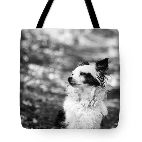 My Dog Tote Bag by Daniel Precht