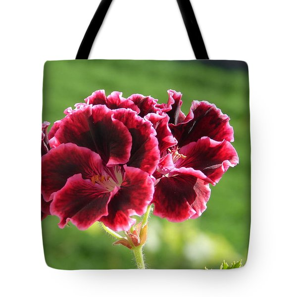 Tote Bag featuring the photograph My Edges Are Pink by Lew Davis