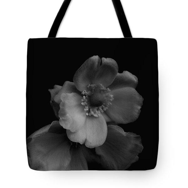 My Fair Lady Tote Bag by Rachel Mirror