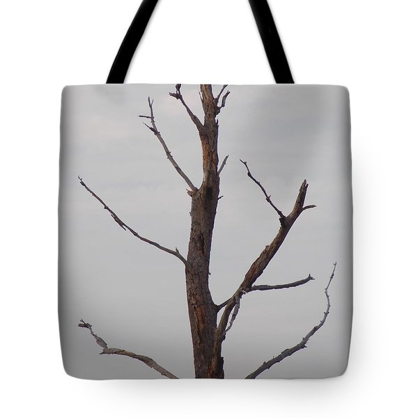 Tote Bag featuring the photograph Alzheimer's  Please Read Description by John Glass