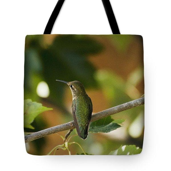 My Green Colored Hummingbird 4 Tote Bag
