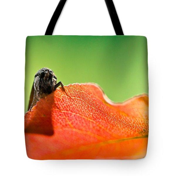 My Leaf Tote Bag by Shane Holsclaw