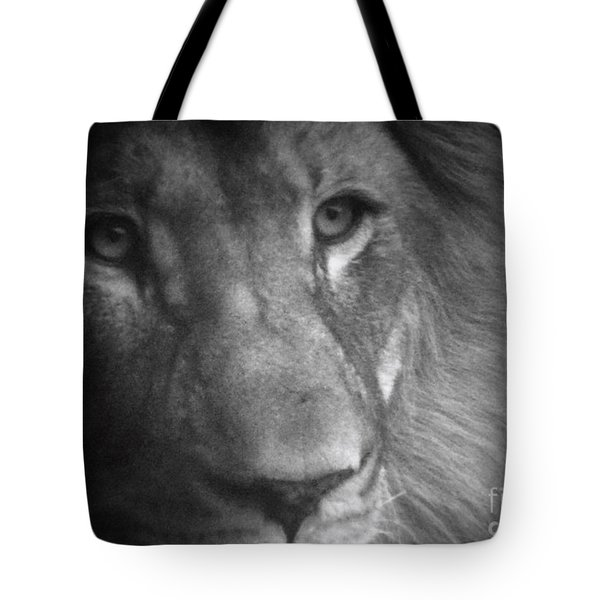 My Lion Eyes Tote Bag by Thomas Woolworth