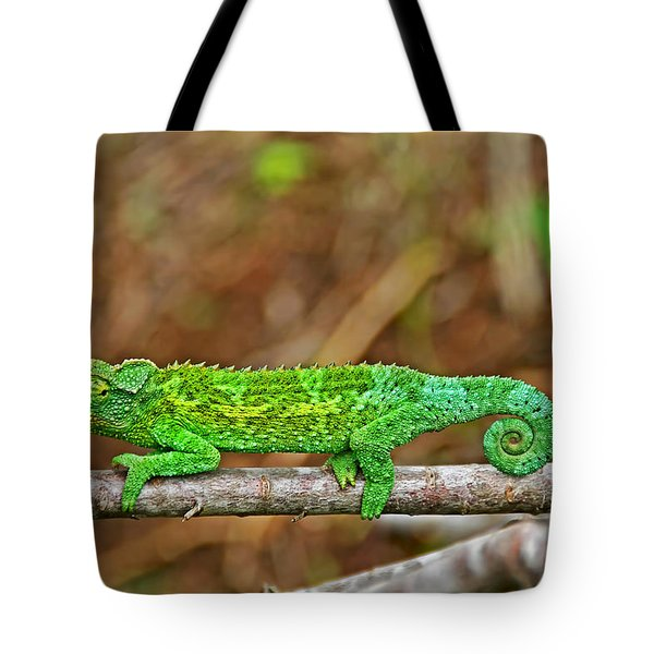 My Magical Tail Tote Bag by Peggy Collins