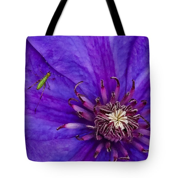 My Old Clematis Home Tote Bag