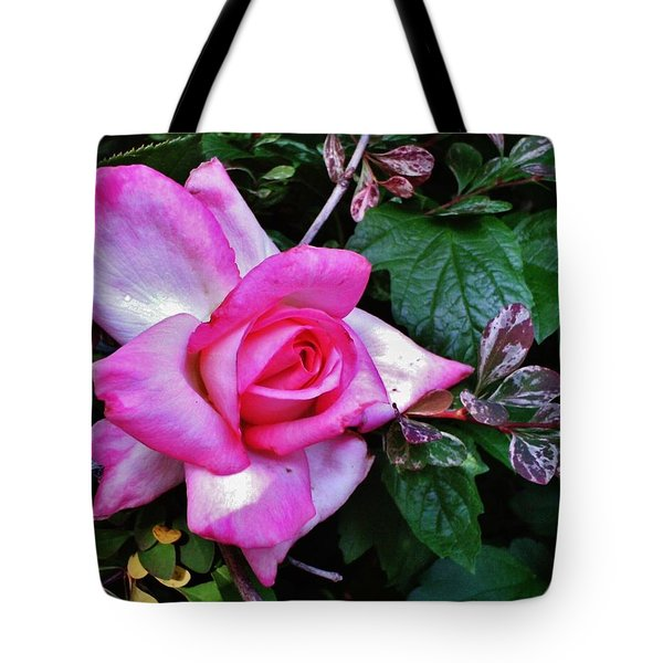 Tote Bag featuring the photograph My Perfect Tea Rose by VLee Watson