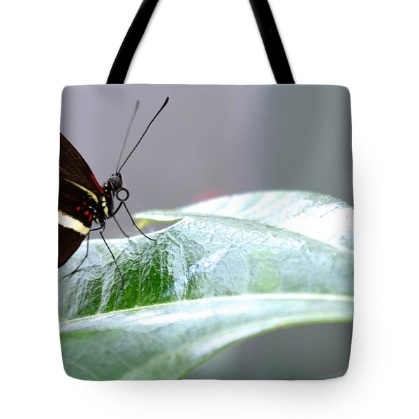 Tote Bag featuring the photograph My Pretty Butterfly by Carla Carson
