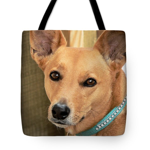 Dog - Cookie One Tote Bag