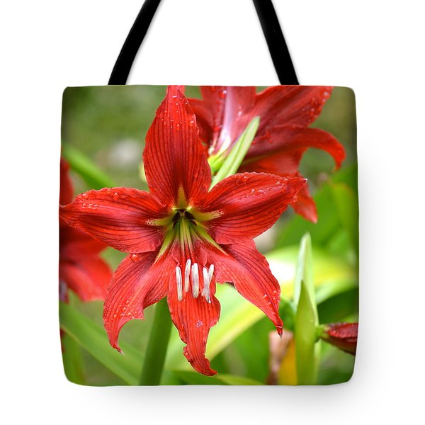 My Red Daylily...after The Rain Tote Bag by Lehua Pekelo-Stearns