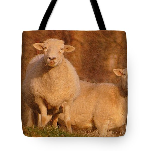 Tote Bag featuring the photograph My Sheep ...   by Lydia Holly