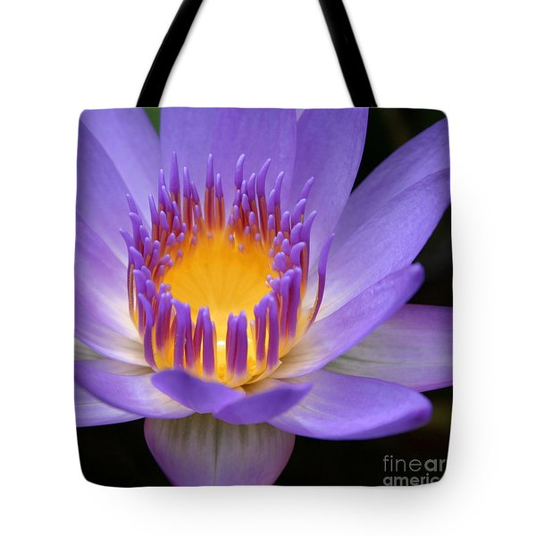My Soul Dressed In Silence Tote Bag