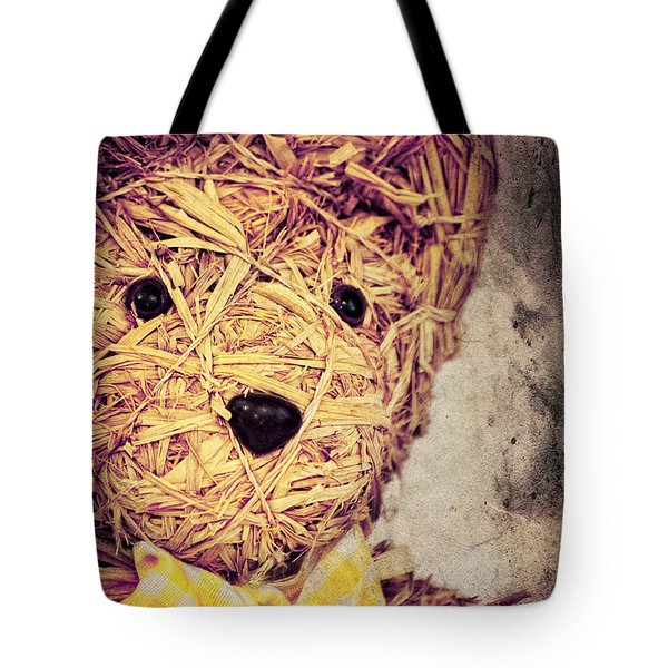 My Teddy Bear Tote Bag by Angela Doelling AD DESIGN Photo and PhotoArt