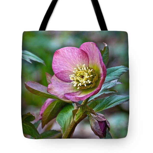 My Wild Xmas Rose Tote Bag by Byron Varvarigos