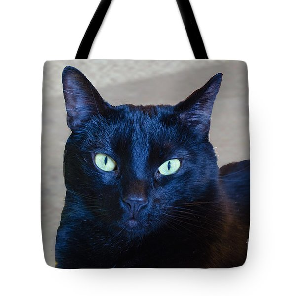 Mysterious Black Cat Tote Bag by Luther Fine Art