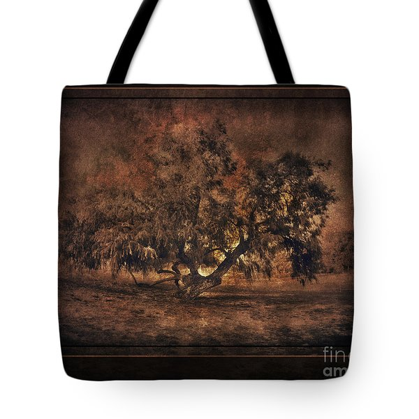 Mysterious Mesquite Tote Bag by Erika Weber