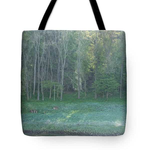 Mysterious Elbe Woods Tote Bag