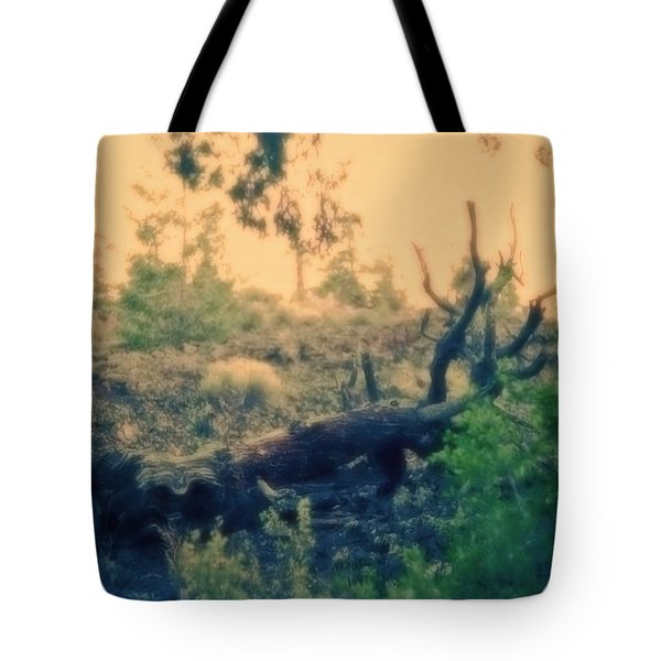 Tote Bag featuring the photograph Mystery And Wonder by Carol Whaley Addassi