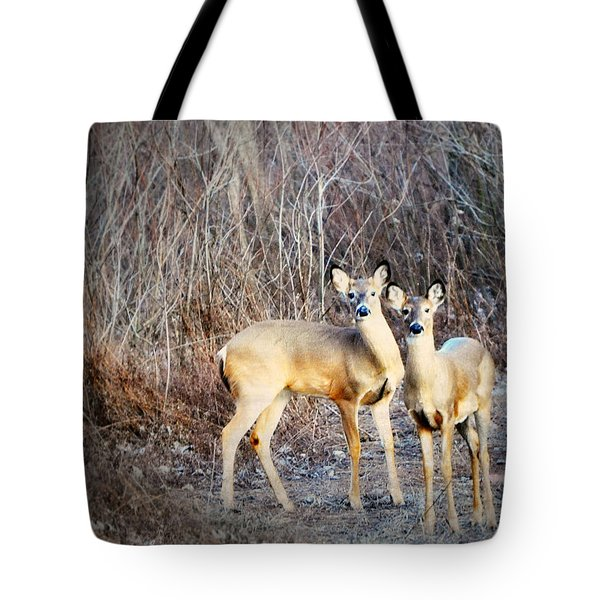 Mystic Duo Tote Bag by Marty Koch