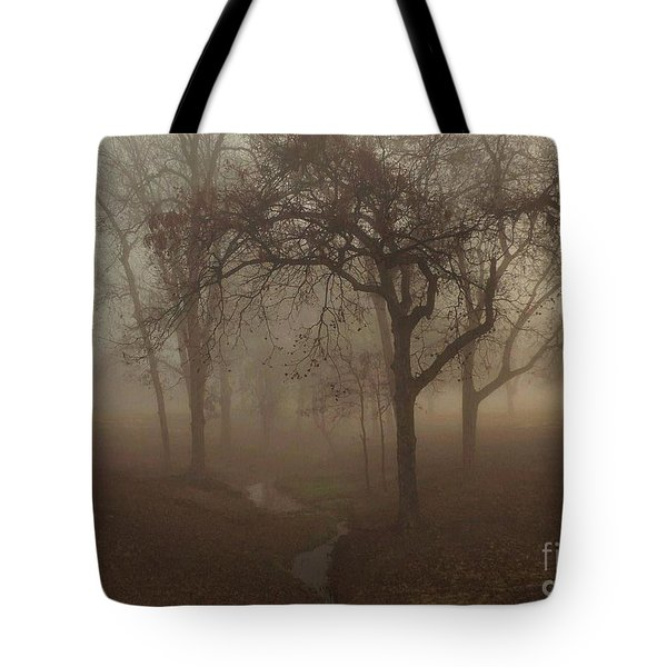 Mystic Forest 004 Tote Bag