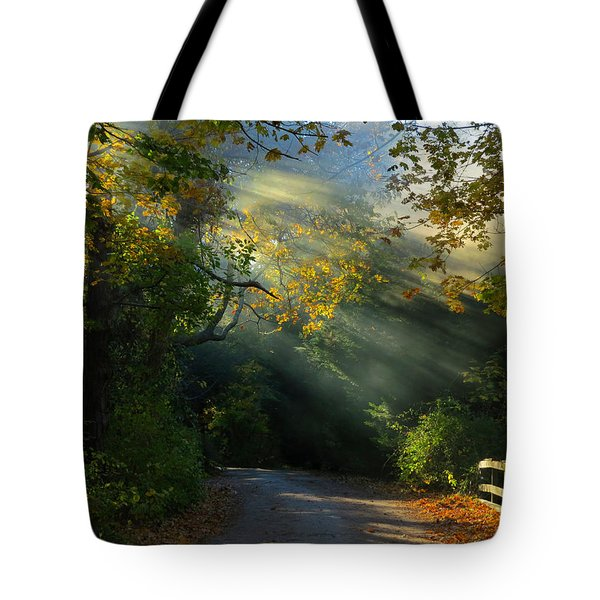 Mystical Tote Bag by Dianne Cowen