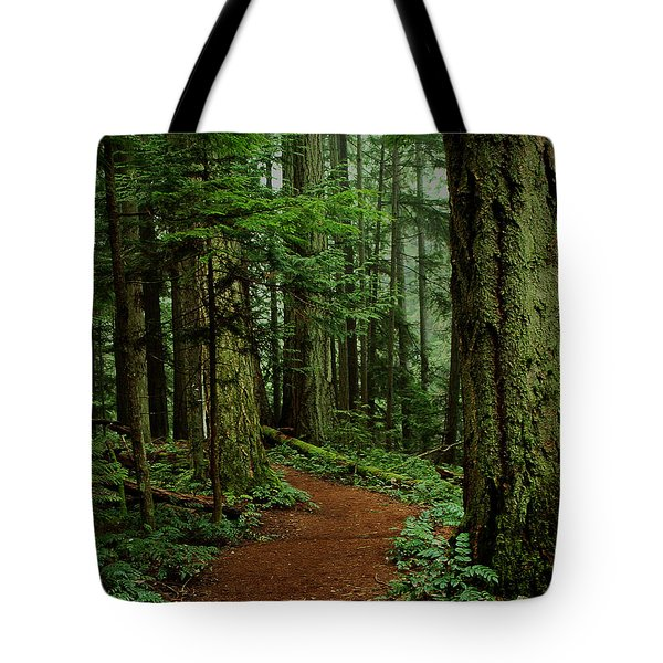 Mystical Path Tote Bag by Randy Hall