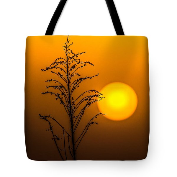 Mystical Sunset Tote Bag by Shelby  Young