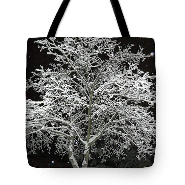 Mystical Winter Beauty Tote Bag